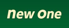 New One【ニューワン】|車両販売【茨城県常総市・埼玉県越谷市】